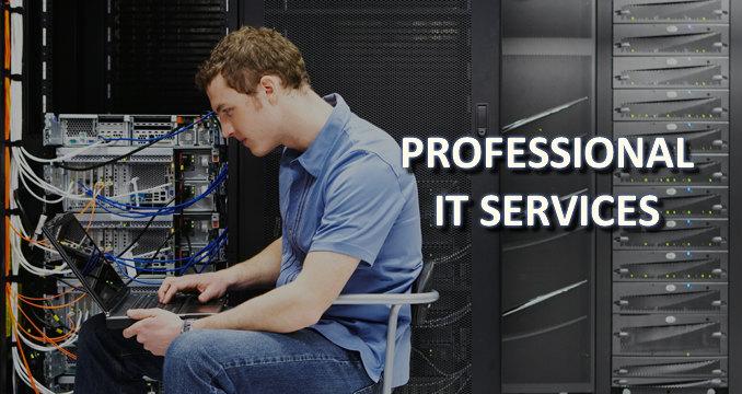 Prof IT Serv_Edtd